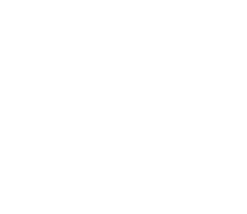 Virtual Basket Raffle 2020